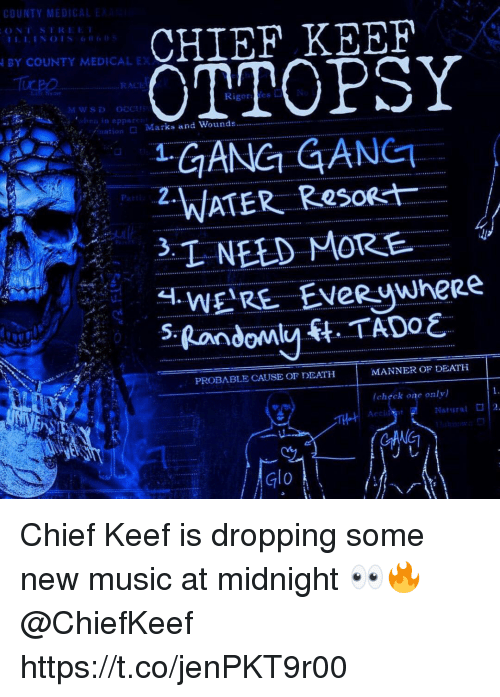 glo: CHIEF KEEF  OTTOPSY  GANG GANET  BY COUNTY MEDICAL EX  RACI  Rigores  /nation  □ Marks and Wounds  P2.  oat  PROBABLE CAUSE Or DEATH  MANNER OF DEATH  (chぐck one only)  Natural  2  TH  Glo Chief Keef is dropping some new music at midnight 👀🔥 @ChiefKeef https://t.co/jenPKT9r00