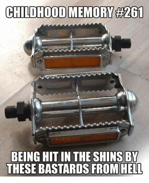 Memes, Hell, and 🤖: CHILDHOOD MEMORY 261  BEING HIT IN THE SHINS BY  THESE BASTARDS FROM HELL
