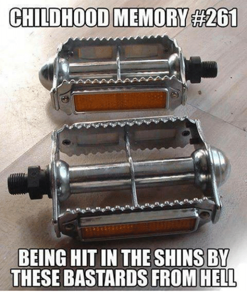 Dank, Hell, and 🤖: CHILDHOOD MEMORY 261  BEING HITIN THE SHINS BY  THESE BASTARDS FROM HELL