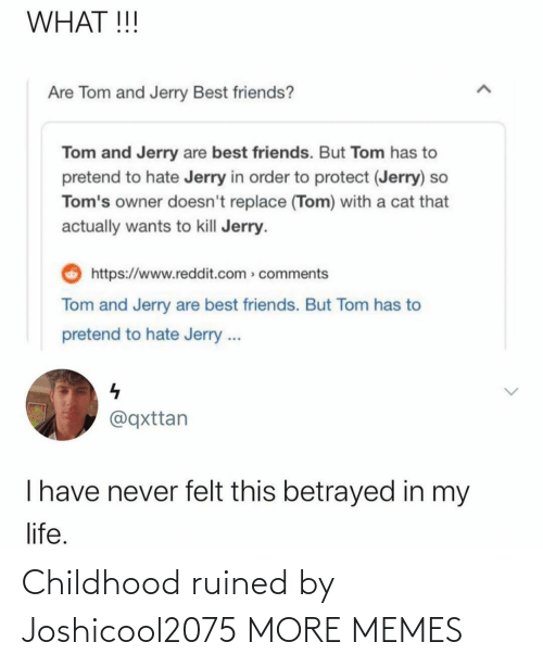 ruined: Childhood ruined by Joshicool2075 MORE MEMES