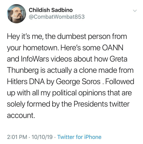 George Soros: Childish Sadbino  @CombatWombat853  Hey it's me, the dumbest person from  your hometown. Here's some OANN  and InfoWars videos about how Greta  Thunberg is actually a clone made from  Hitlers DNA by George Soros Followed  up with all my political opinions that are  solely formed by the Presidents twitter  account.  2:01 PM 10/10/19 Twitter for iPhone