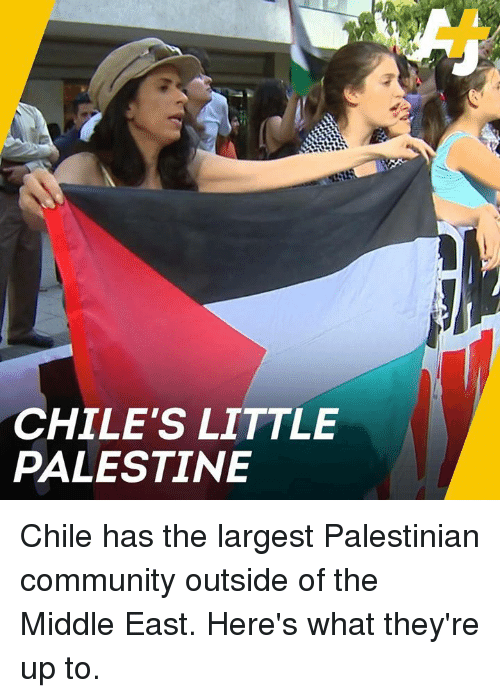 palestinian: CHILE'S LITTLE  PALESTINE Chile has the largest Palestinian community outside of the Middle East. Here's what they're up to.