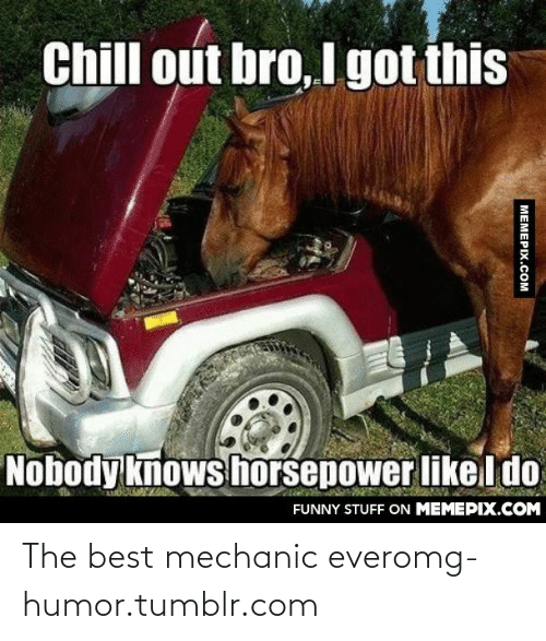 mechanic: Chill out bro, I got this  Nobody knows horsepower likel do  FUNNY STUFF ON MEMEPIX.COM  MEMEPIX.COM The best mechanic everomg-humor.tumblr.com