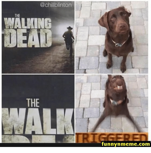 the walking: @chillblinton  THE  WALKING  THE  funnynmeme.com