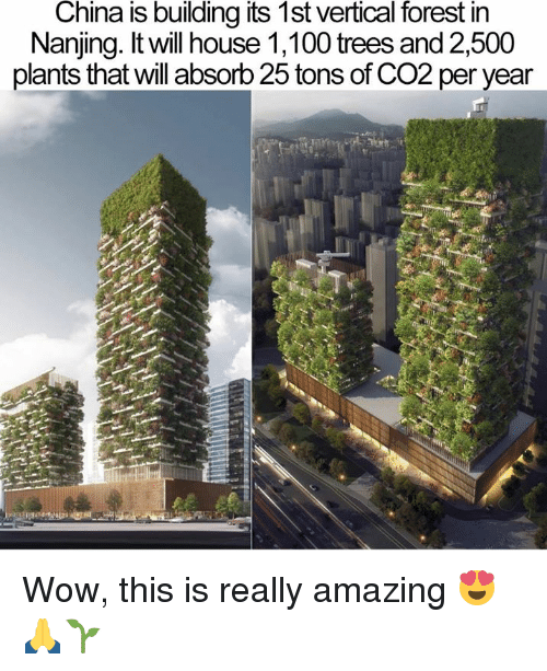 Anaconda, Memes, and Wow: China is building its 1st vertical forest in  Nanjing. It will house 1,100 trees and 2,500  plants that will absorb 25 tons of CO2 per year Wow, this is really amazing 😍🙏🌱