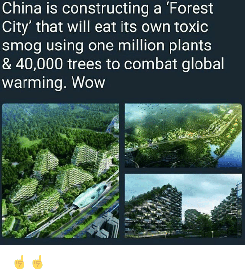 Memes, Wow, and China: China is constructing a Forest  City' that will eat its own toxic  smog using one million plants  & 40,000 trees to combat global  warmina. Wow ☝️☝️