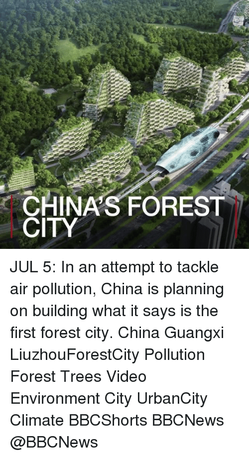 Memes, China, and Trees: CHINA'S FOREST  CITY JUL 5: In an attempt to tackle air pollution, China is planning on building what it says is the first forest city. China Guangxi LiuzhouForestCity Pollution Forest Trees Video Environment City UrbanCity Climate BBCShorts BBCNews @BBCNews