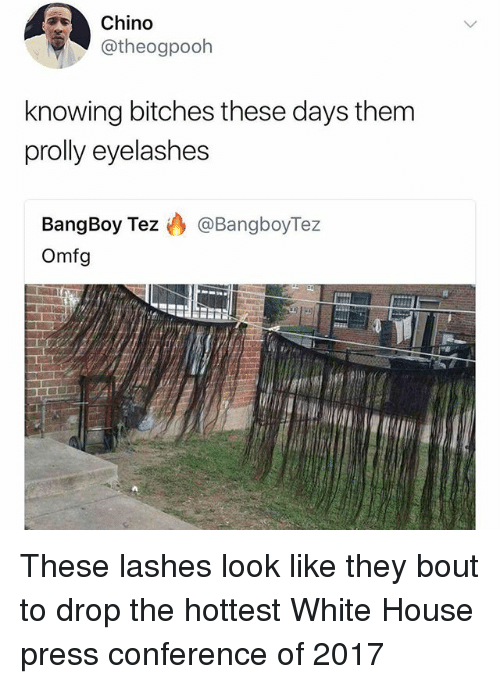 White House Press: Chino  otheogpooh  knowing bitches these days them  prolly eyelashes  BangBoy Tez @BangboyTez  Omfg These lashes look like they bout to drop the hottest White House press conference of 2017