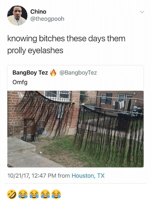 Houston, Girl Memes, and Houston Tx: Chino  @theogpooh  knowing bitches these days them  prolly eyelashes  BangBoy Tez @BangboyTez  Omfg  10/21/17, 12:47 PM from Houston, TX 🤣😂😂😂😂