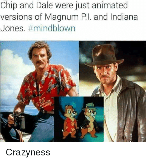 Just Anime: Chip and Dale were just animated  versions of Magnum Pl. and Indiana  Jones  mindblown Crazyness