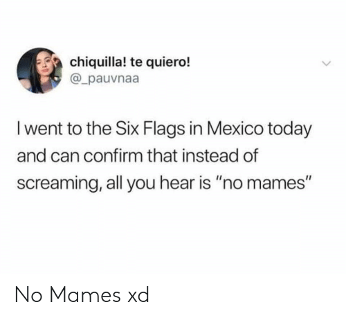 "No Mames: chiquilla! te quiero!  @_pauvnaa  I went to the Six Flags in Mexico today  and can confirm that instead of  screaming, all you hear is ""no mames"" No Mames xd"