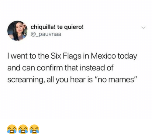 "No Mames: chiquilla! te quiero!  @_pauvnaa  l went to the Six Flags in Mexico today  and can confirm that instead of  screaming, all you hear is ""no mames"" 😂😂😂"