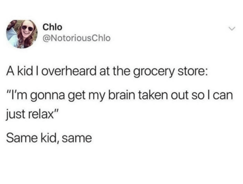 "just relax: Chlo  @NotoriousChlo  A kid I overheard at the grocery store:  ""I'm gonna get my brain taken out so I can  just relax""  Same kid, same"