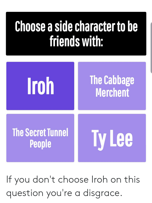 secret tunnel: Choose a side character to be  friends with:  The Cabbage  Merchent  Iroh  The Secret Tunnel  Ty Lee  People If you don't choose Iroh on this question you're a disgrace.