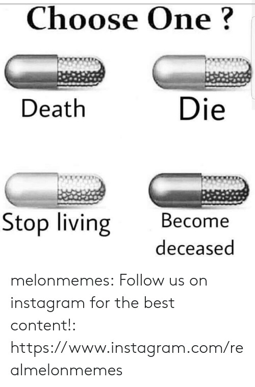 Choose one: Choose One?  Death  Die  Stop living Become  deceased melonmemes:  Follow us on instagram for the best content!: https://www.instagram.com/realmelonmemes