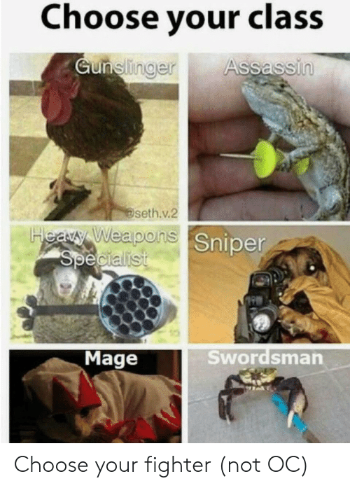 fighter: Choose your class  Gunelinger  Assassin  seth.v.2  Heary Weapons Sniper  Specialist  Swordsman  Mage Choose your fighter (not OC)
