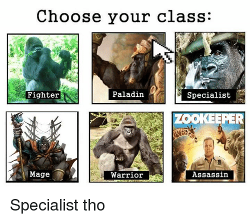 SIZZLE: Choose your class:  Paladin  Fighter  Specialist  LOOKEEPER  Mage  Assassin  Warrior Specialist tho