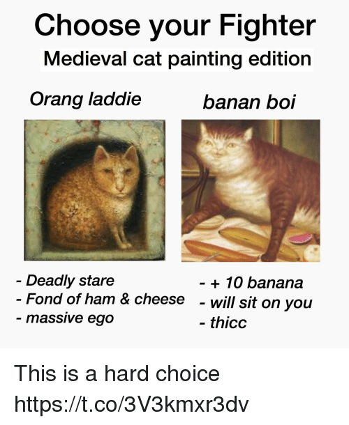 fond: Choose your Fighter  Medieval cat painting edition  Orang laddie  banan boi  Deadly stare  Fond of ham & cheese  massive ego  + 10 banana  - will sit on you  thicc This is a hard choice https://t.co/3V3kmxr3dv