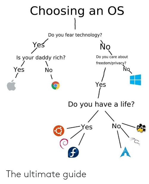 you care: Choosing an OS  Do you fear technology?  Yes  No  Do you care about  Is your daddy rich?  freedom/privacy?  Yes  No  Yes  Do you have a life?  No  Yes  1. The ultimate guide
