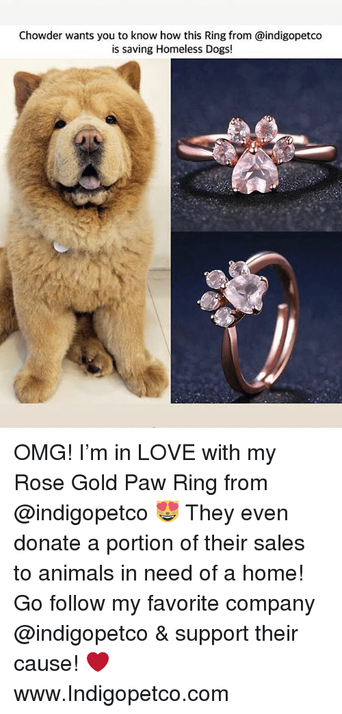 Chowder: Chowder wants you to know how this Ring from @indigopetco  is saving Homeless Dogs! OMG! I'm in LOVE with my Rose Gold Paw Ring from @indigopetco 😻 They even donate a portion of their sales to animals in need of a home! Go follow my favorite company @indigopetco & support their cause! ❤️ www.Indigopetco.com