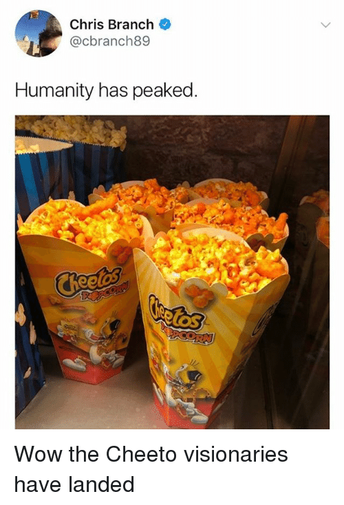 Memes, Wow, and Humanity: Chris Branch  @cbranch89  Humanity has peaked  los Wow the Cheeto visionaries have landed
