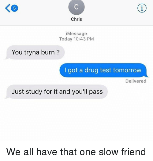 Drug Test, Drug Testing, and Slow: Chris  i Message  Today 10:43 PM  You tryna burn?  I got a drug test tomorrow  Delivered  Just study for it and you'll pass We all have that one slow friend