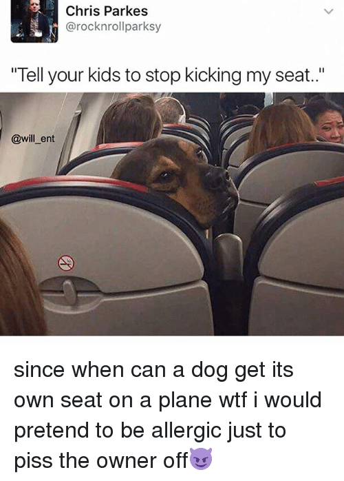 "Memes, 🤖, and Planes: Chris Parkes  SL arocknrollparksy  ""Tell your kids to stop kicking my seat.  @will ent since when can a dog get its own seat on a plane wtf i would pretend to be allergic just to piss the owner off😈"