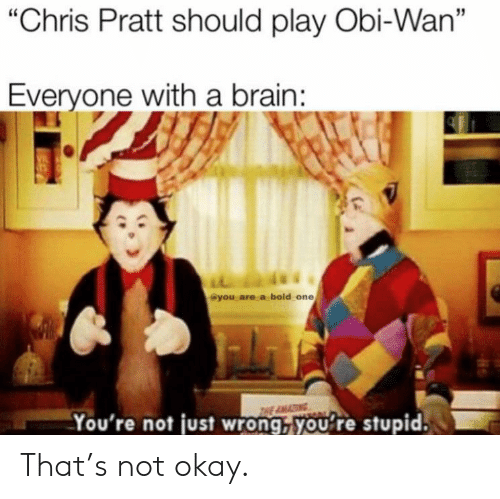 """Chris Pratt: """"Chris Pratt should play Obi-Wan""""  Everyone with a brain:  VIL  @you are a bold one  THE AMA  You're not just wrong, you're stupid. That's not okay."""