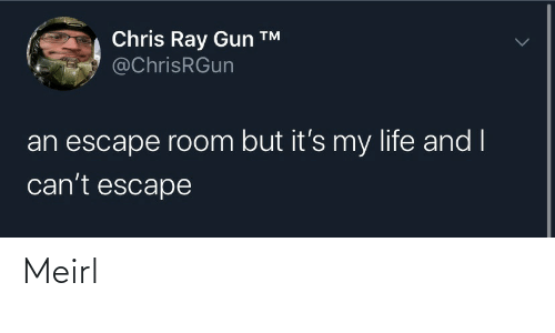 escape: Chris Ray Gun ™  @ChrisRGun  an escape room but it's my life and I  can't escape Meirl