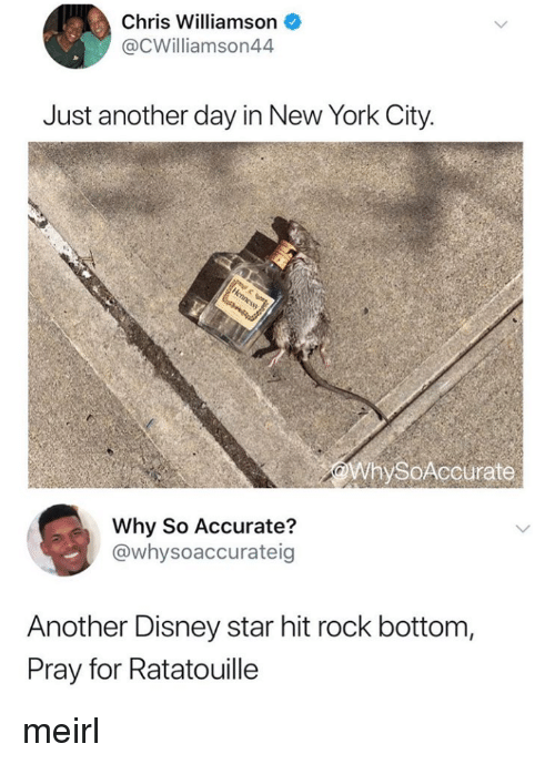 Ratatouille: Chris Williamson  @CWilliamson44  Just another day in New York City.  WhySoAccurate  Why So Accurate?  @whysoaccurateig  Another Disney star hit rock bottom,  Pray for Ratatouille meirl