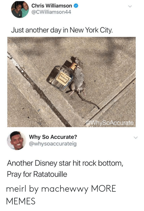 Ratatouille: Chris Williamson  @CWilliamson44  Just another day in New York City.  WhySoAccurate  Why So Accurate?  @whysoaccurateig  Another Disney star hit rock bottom,  Pray for Ratatouille meirl by machewwy MORE MEMES