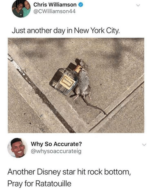 Ratatouille: Chris Williamson  @CWilliamson44  Just another day in New York City  Why So Accurate?  @whysoaccurateig  Another Disney star hit rock bottom,  Pray for Ratatouille