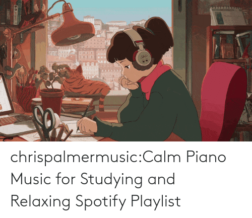 studying: chrispalmermusic:Calm Piano Music for Studying and Relaxing Spotify Playlist