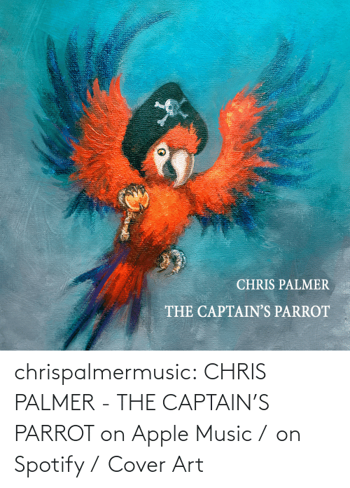 Apple: chrispalmermusic:  CHRIS PALMER - THE CAPTAIN'S PARROT on Apple Music /  on Spotify /  Cover Art