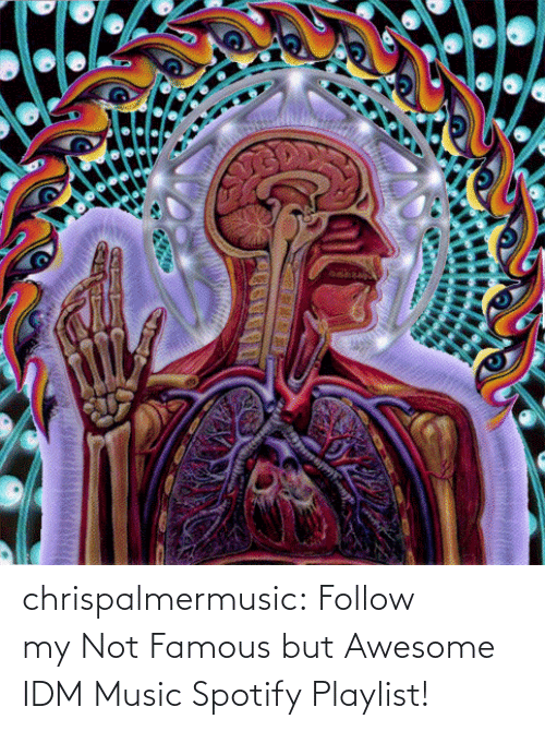 Awesome: chrispalmermusic:  Follow my Not Famous but Awesome IDM Music Spotify Playlist!