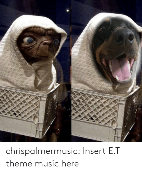 E.T.: chrispalmermusic:  Insert E.T theme music here