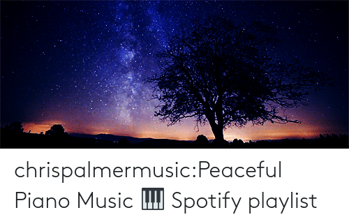 open: chrispalmermusic:Peaceful Piano Music 🎹 Spotify playlist