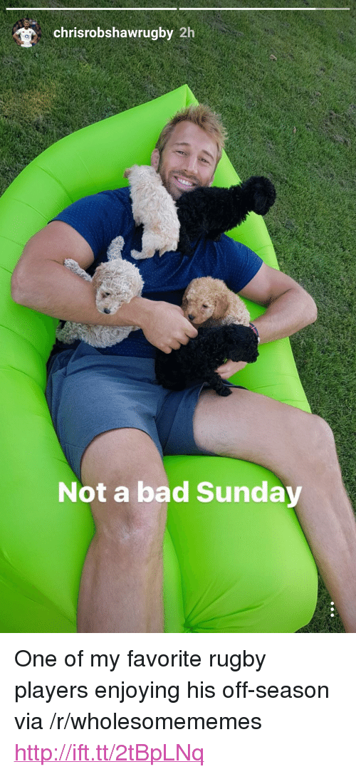 """Off: chrisrobshawrugby 2h  o,  Not a bad Sunday <p>One of my favorite rugby players enjoying his off-season via /r/wholesomememes <a href=""""http://ift.tt/2tBpLNq"""">http://ift.tt/2tBpLNq</a></p>"""