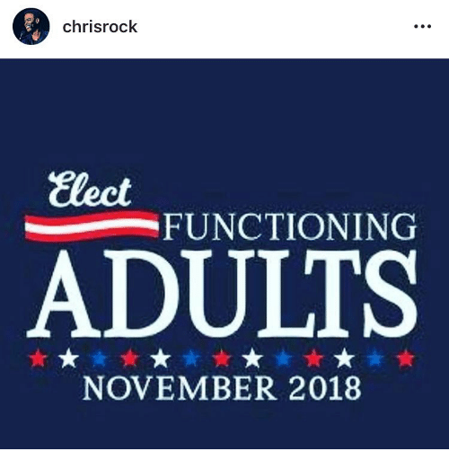 Memes, 🤖, and November: chrisrock  Elect  FUNCTIONING  ADULTS  NOVEMBER 2018