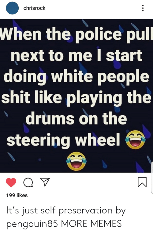 drums: chrisrock  When the police pull  next to me I start  doing white people  shit like playing the  drums on the  steering wheel  Q V  199 likes It's just self preservation by pengouin85 MORE MEMES