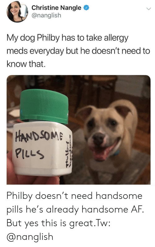 meds: Christine Nangle  @nanglish  My dog Philby has to take allergy  meds everyday but he doesn't need to  know that.  HAND SOM  ILLS Philby doesn't need handsome pills he's already handsome AF. But yes this is great.Tw: @nanglish