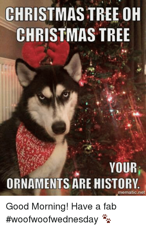 memes: CHRISTMAS TREE OH  CHRISTMAS TREE  YOUR  ORNAMENTS ARE HISTORY  mematic net Good Morning!  Have a fab #woofwoofwednesday 🐾