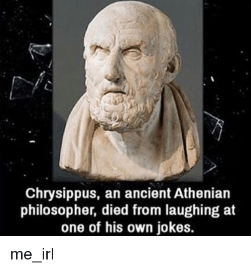 Jokes, Ancient, and Irl: Chrysippus, an ancient Athenian  philosopher, died from laughing at  one of his own jokes. me_irl