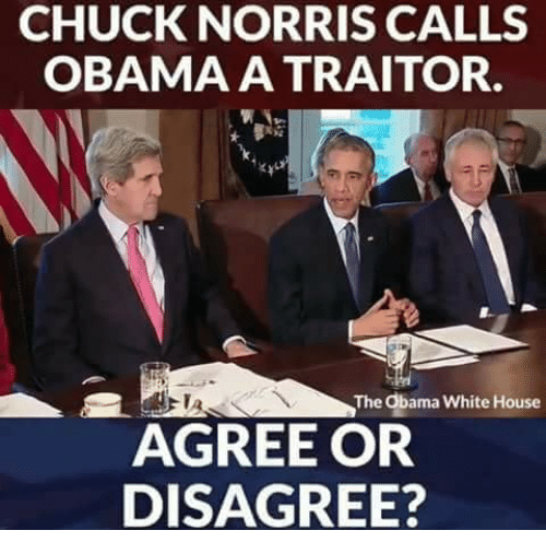 Chuck Norris: CHUCK NORRIS CALLS  OBAMA A TRAITOR.  The Obama White House  AGREE OR  DISAGREE?