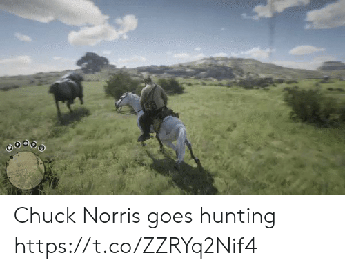Chuck Norris: Chuck Norris goes hunting https://t.co/ZZRYq2Nif4