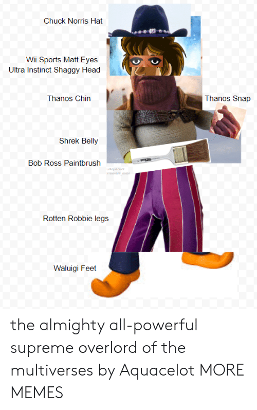 Chuck Norris: Chuck Norris Hat  Wii Sports Matt Eyes  Ultra Instinct Shaggy Head  Thanos Chin  Thanos Snap  Shrek Belly  Bob Ross Paintbrush  Rotten Robbie legs j  Waluigi Feet the almighty all-powerful supreme overlord of the multiverses by Aquacelot MORE MEMES