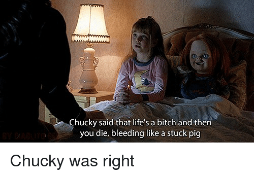 Pigly: Chucky said that life's a bitch and then  you die, bleeding like a stuck pig Chucky was right