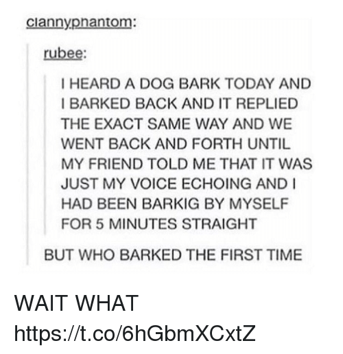 Time, Today, and Voice: ciannypnantom:  rubee  I HEARD A DOG BARK TODAY AND  I BARKED BACK AND IT REPLIED  THE EXACT SAME WAY AND WE  WENT BACK AND FORTH UNTIL  MY FRIEND TOLD ME THAT IT WAS  JUST MY VOICE ECHOING AND I  HAD BEEN BARKIG BY MYSELF  FOR 5 MINUTES STRAIGHT  BUT WHO BARKED THE FIRST TIME WAIT WHAT https://t.co/6hGbmXCxtZ