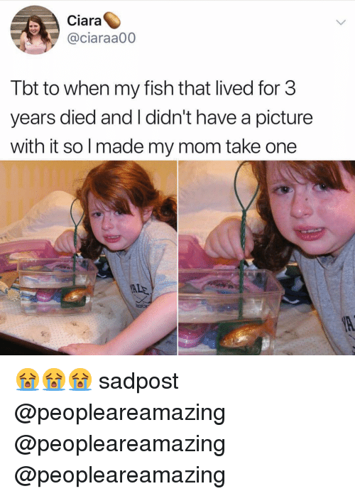 Ciara: Ciara  @ciaraa00  Tbt to when my fish that lived for 3  years died and I didn't have a picture  with it so l made my mom take one  ALE 😭😭😭 sadpost @peopleareamazing @peopleareamazing @peopleareamazing