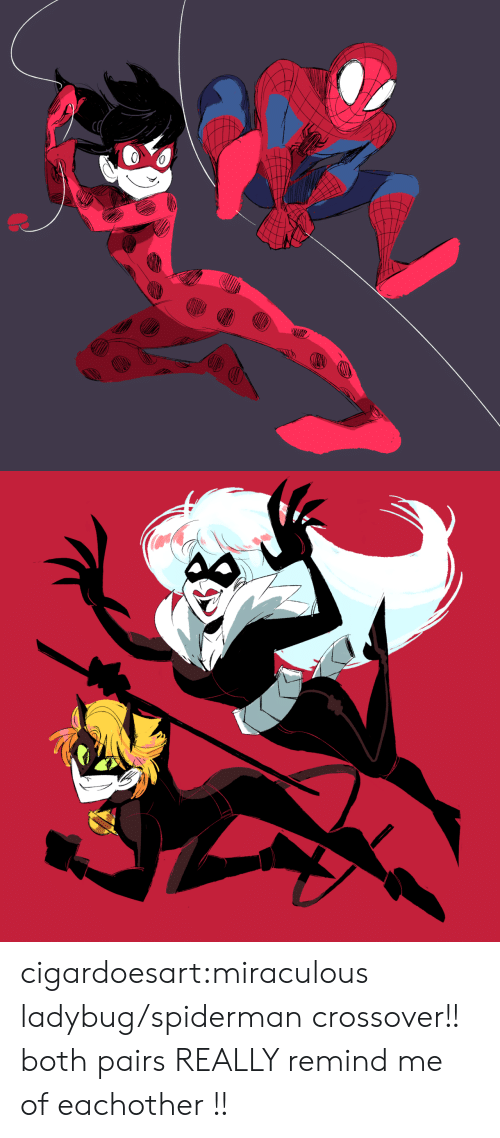 Spiderman: cigardoesart:miraculous ladybug/spiderman crossover!! both pairs REALLY remind me of eachother !!